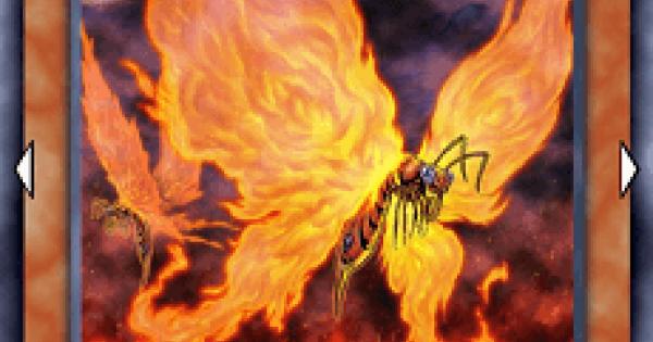 炎妖蝶ウィルプスの評価と入手方法