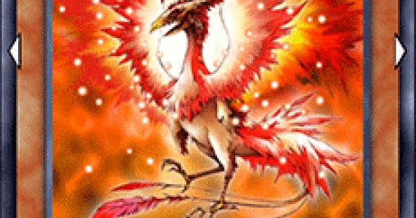 火炎鳥(バーニングバード)の評価と入手方法