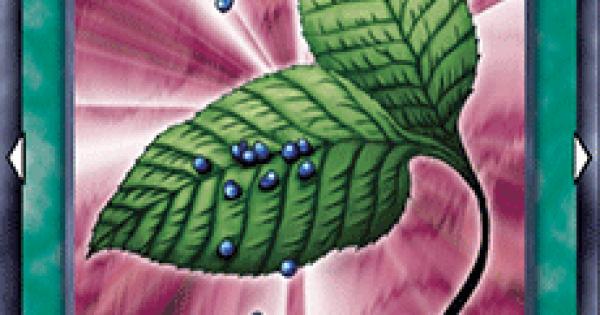 ゴブリンの秘薬の評価と入手方法