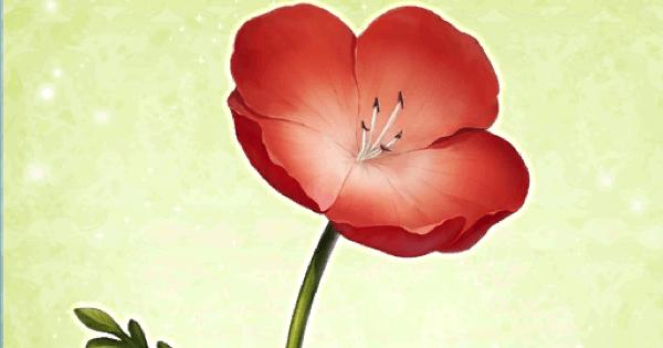 『赤い花』の性能