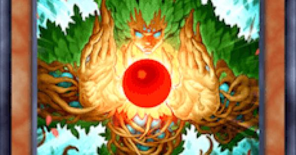 森の聖霊エーコの評価と入手方法