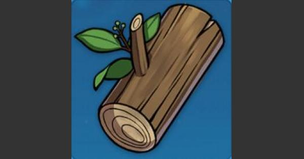 樟の木材の入手方法と使い道