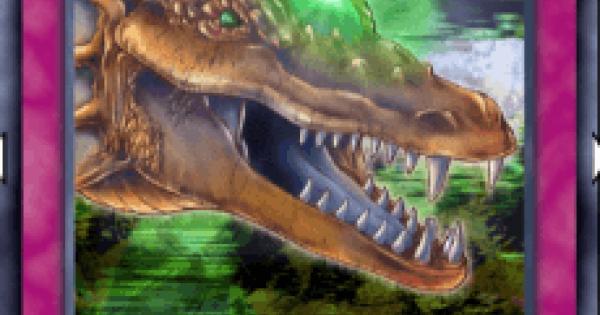 ドラゴンの宝珠の評価と入手方法