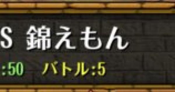 コロシアム/vs錦えもん|決勝戦攻略