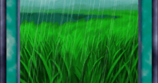 湿地草原の評価と入手方法