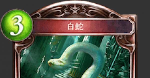 白蛇の情報