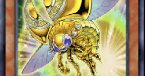 黄金の天道虫の評価と入手方法
