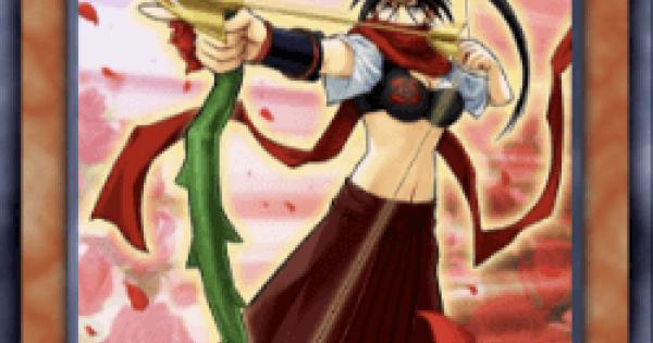 薔薇の聖弓手の評価と入手方法
