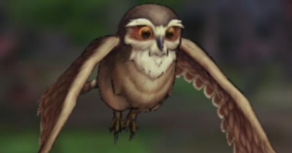 フクロウの評価とスキル/装備