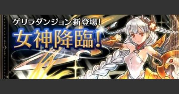 女神+297降臨(絶地獄級)ノーコン攻略パーティ