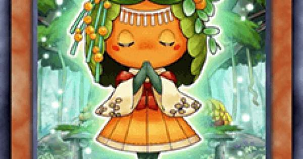森羅の蜜柑子シトラの評価と入手方法