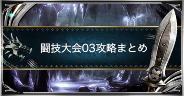 闘技大会03(リオレイア)のSランクを取る方法!