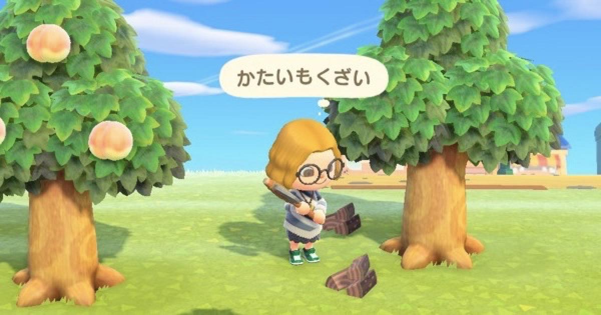 森 復活 あつ 木材