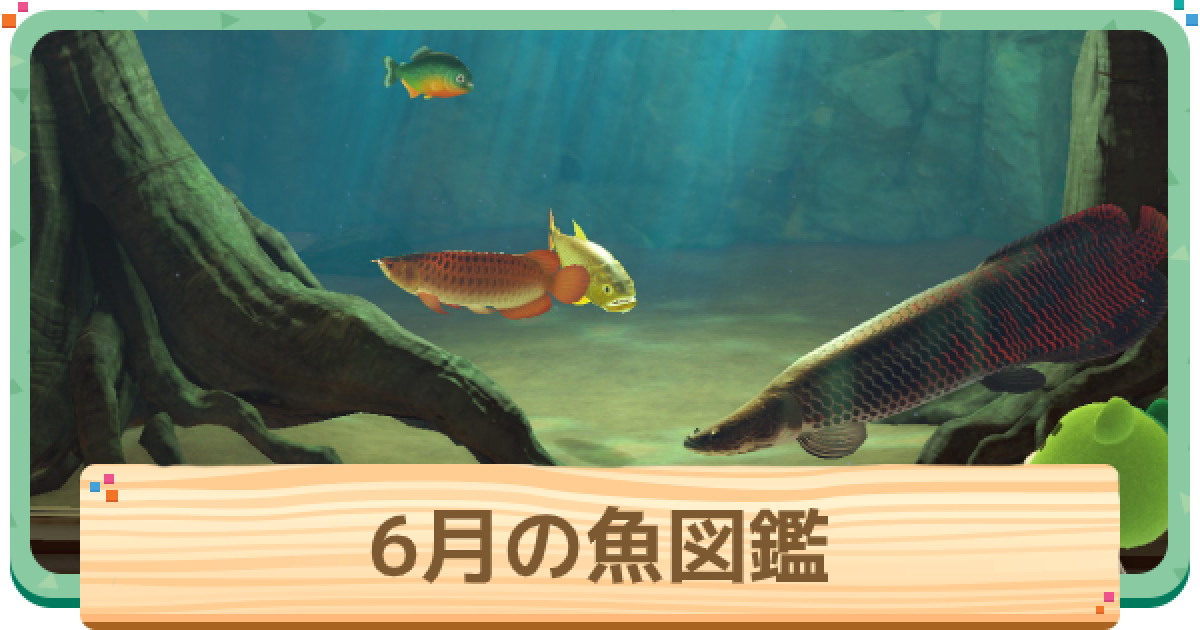 あつ森魚の値段ランキング