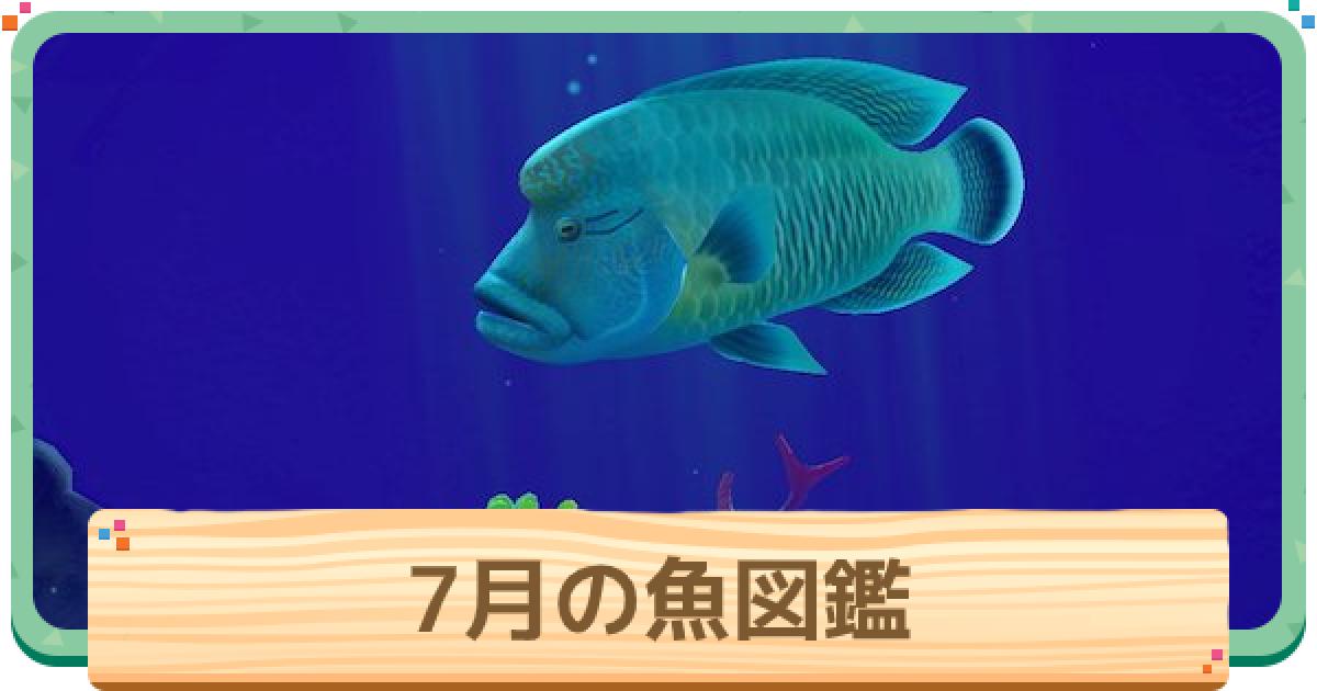 あつまれ どうぶつ の 森 魚 値段 表