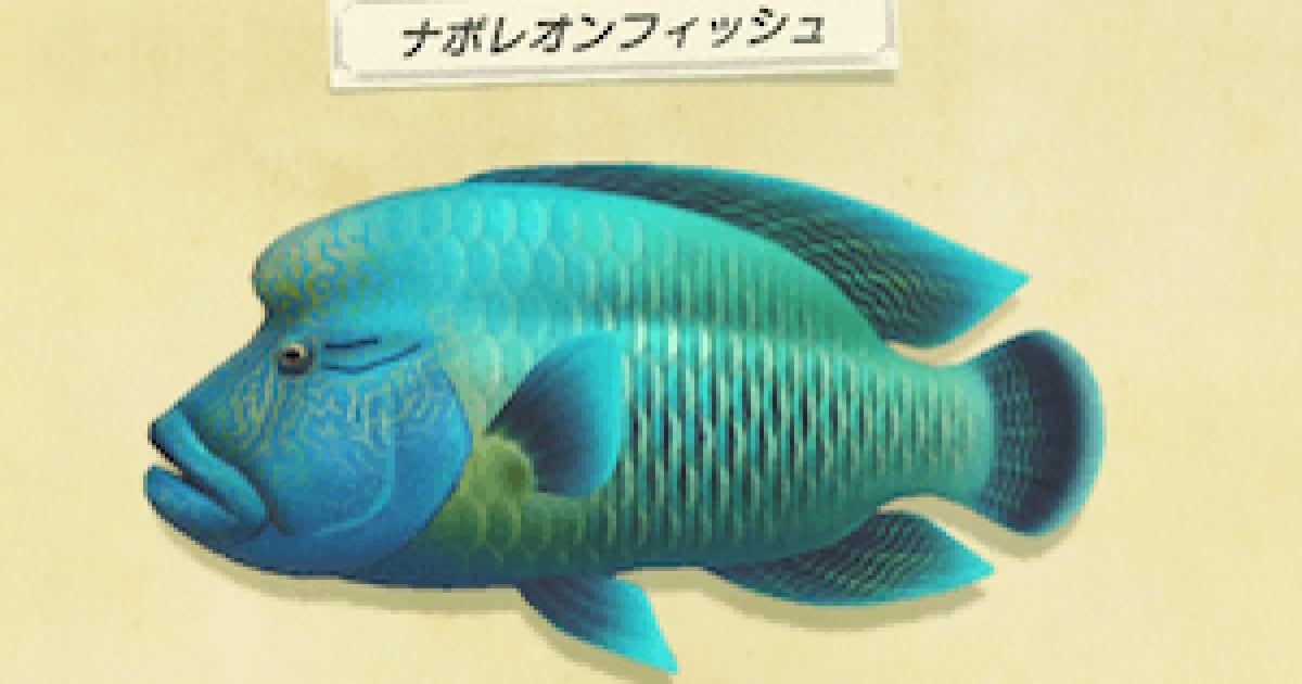あつ森6がつにつれる魚