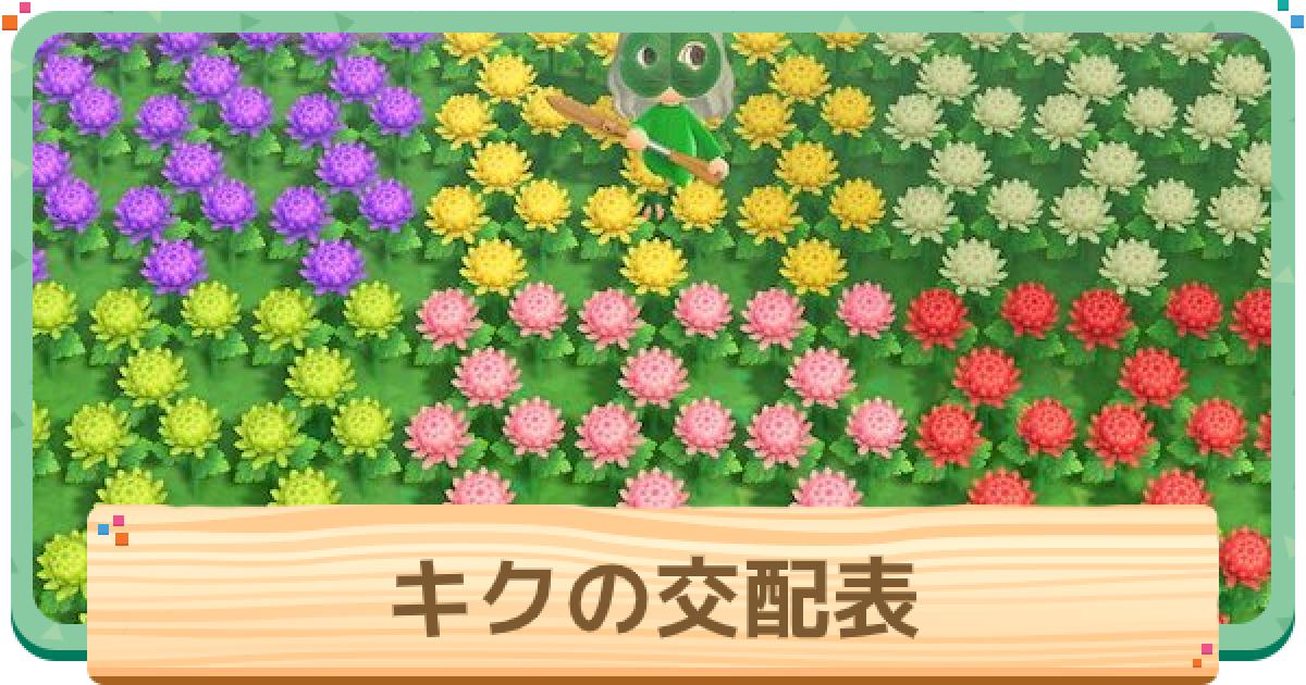 の 表 交配 どうぶつ 森 あつまれ 花 の