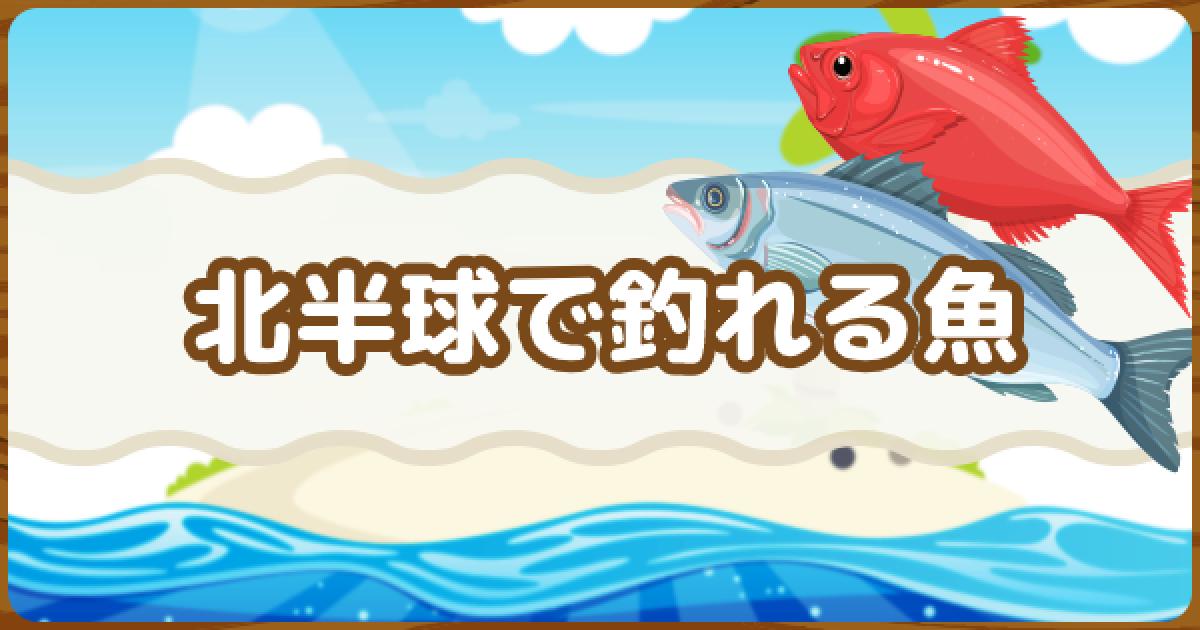 森魚 種類 あつ