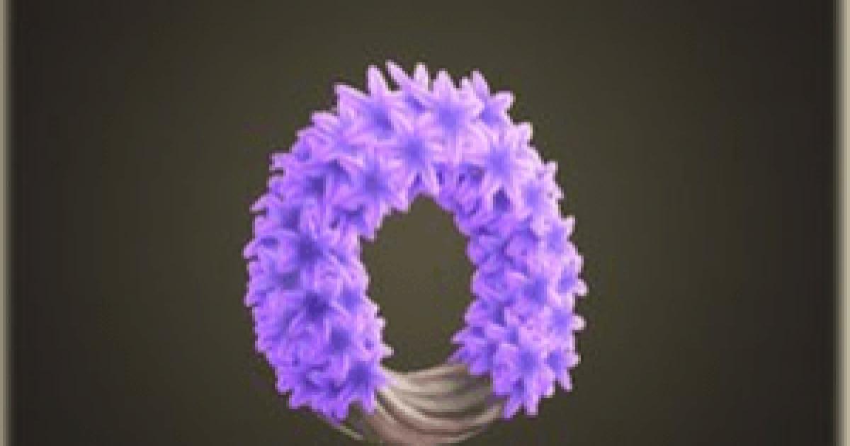 森 紫 の ヒヤシンス あつ