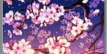 清夜桜雲の性能 | 後衛スキル