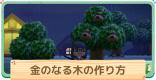 金(かね)のなる木の作り方|手順付き