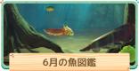 6月の魚一覧 | 値段と出現時間・場所