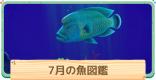 7月の魚一覧 | 値段と出現時間・場所