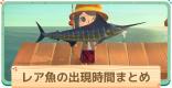 レア魚の出現時間帯・値段まとめ