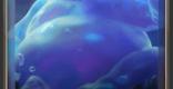 バブルベアの情報