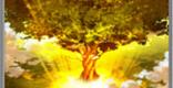大義の聖木の性能 | 後衛スキル