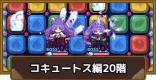 コキュートス編20階攻略 タワポコ