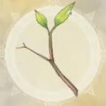 若木の枝葉