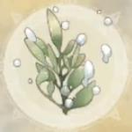 水聖樹の枝