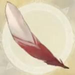 巨鳥の風切羽