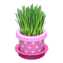 ネコぐさピンク緑
