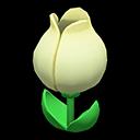 チューリップのビックリばこ白緑