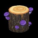 キノコのげんぼく茶紫