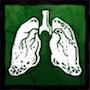 鹿の肺の画像