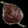 忘れじの葉のアイコン