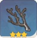 遠海夷地の石枝