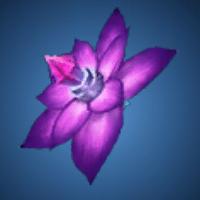 鎧蠍の毒花のイラスト