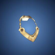 博愛の首輪のイラスト