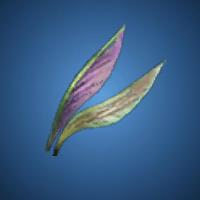 猛虫の羽根のイラスト