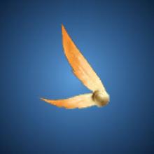 賢兄の羽根のイラスト