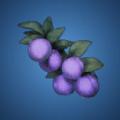 冥府の果実のイラスト