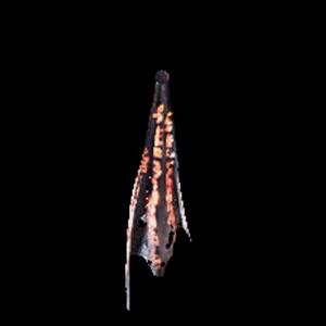 深淵の龍骸布・赤