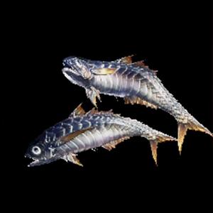 工房武器派生型【魚】