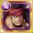 遊騎士ドーマ 白ひげ海賊団傘下