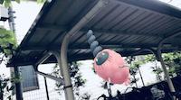 ミノムッチ(ゴミのミノ)のAR画像