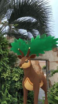 メブキジカ(なつのすがた)のAR画像